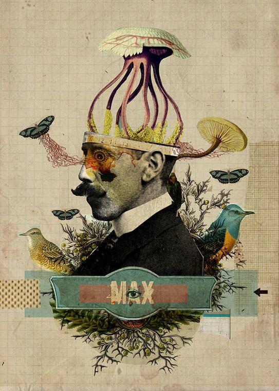 portifolio   Collage, Diego Max