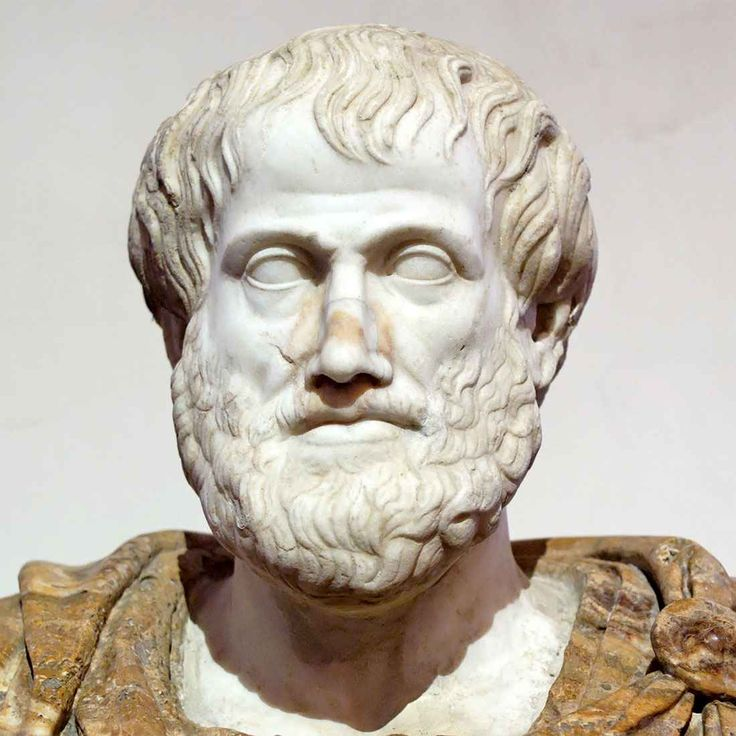 aristotle contemplative life essay Aristotle first used the term ethics to name a field of study developed by his predecessors socrates and plato philosophical ethics is the attempt to offer a.