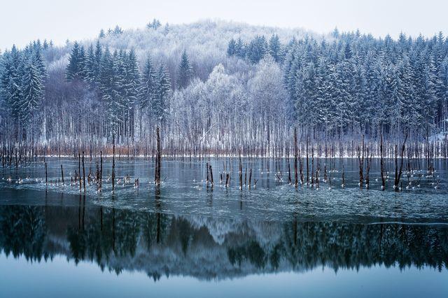 湖に降る初雪(ルーマニア)