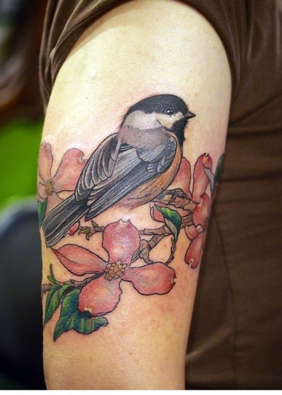 Beautiful Realistic Chickadee Tattoo By Australian Realism