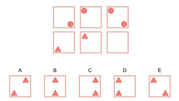 NNAT2 Example Question: Spacial Reasoning