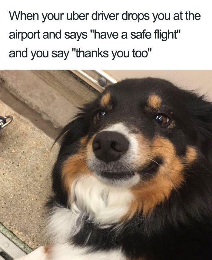 Husker Doggo
