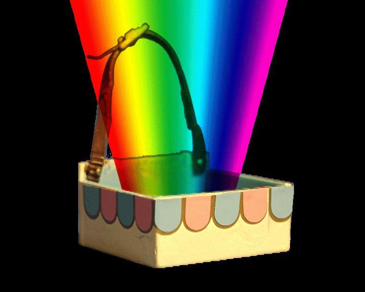 LittleBark-rainbow