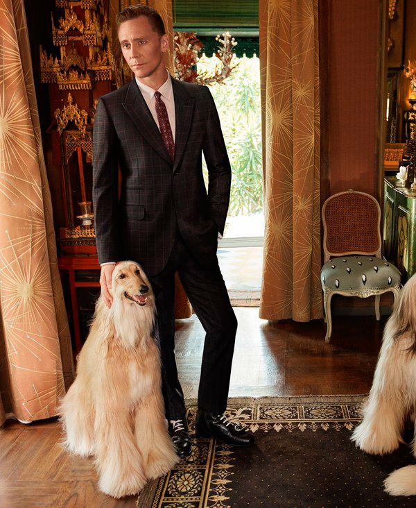 """""""So it shouldn't come as a total surprise that Gucci, a.k.a. the world's hottest label right now, has tapped Hiddleston as the face of their latest tailoring campaign"""" http://www.gq.com/story/gucci-tom-hiddleston-ad-campaign-suits?mbid=social_twitter"""
