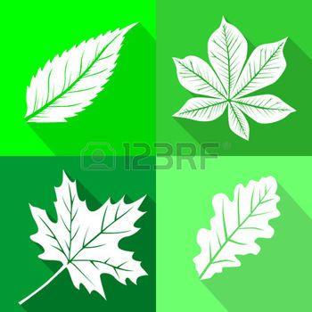 dibujos de hojas de otoño: este es un conjunto de hojas iconos