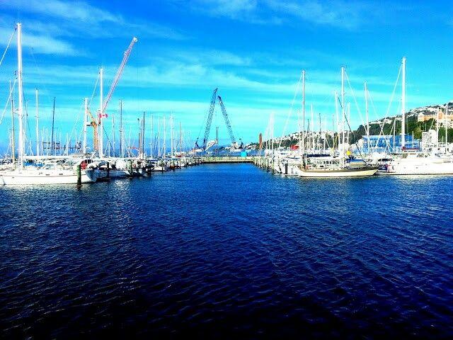Wellington harbour #wellywood #Newzealand #Delacruize