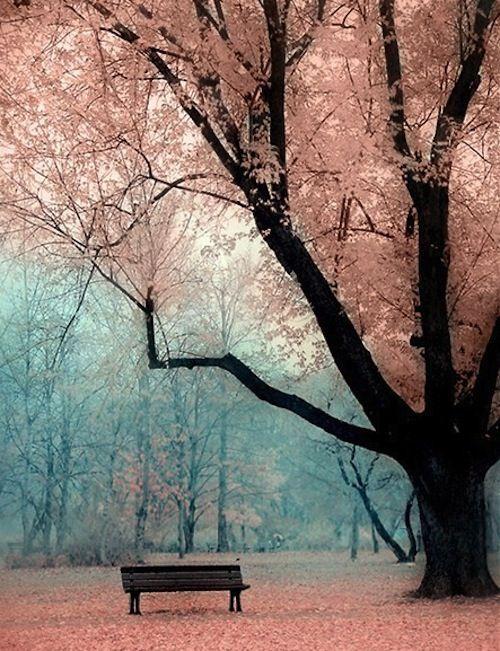 I see life in rosy hues...this must be la vie en rose