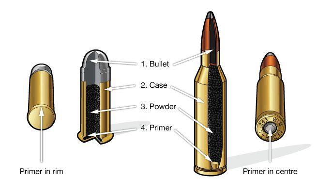 Rimfire and Centerfire cartridges.