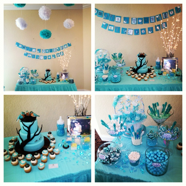 Teal baby shower party ideas pinterest teal baby for Baby shower decoration online