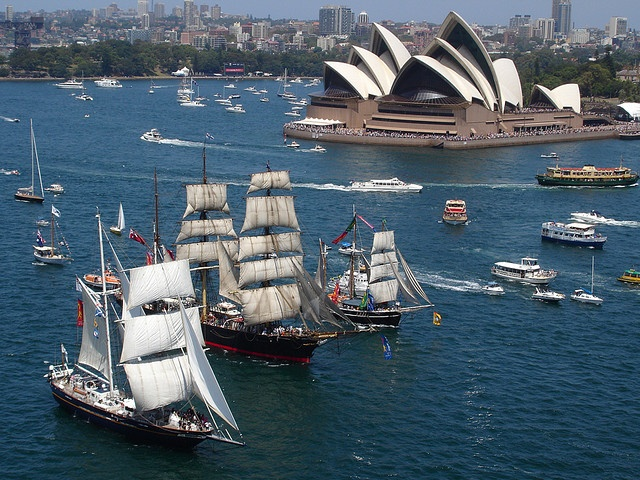 Australia Day Tall Ships Race
