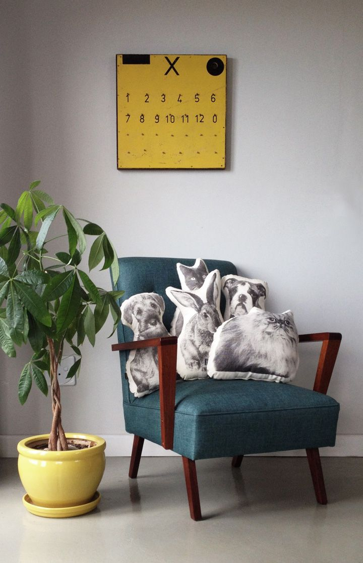 Handsome animal friend cushions  for your home!  www.andmenagerie.co.za https://www.etsy.com/shop/andMenagerie photo: Cecile Blake