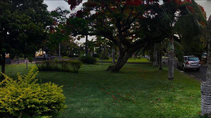 Place de la mairie, les flamboyants - Île de la Réunion.