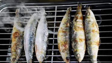 Hoe kan ik zelf vis roken? | VTM Koken
