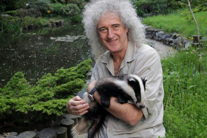 Brian May, a champion for animals. . . .  one of the really good guys