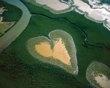 Corazón de Voh, Nueva Caledonia, Francia. Esta isla esta formada por aguas esmeralda del Pacifico Sur, formada por varias plantas halofilas y un denso manglar en medio de un tupido bosque.!