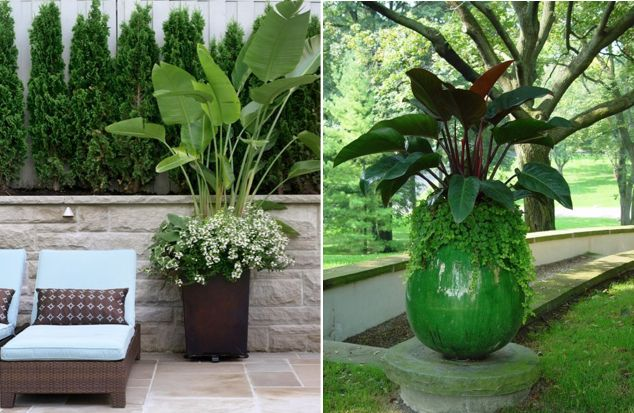 the-small-garden-feature-pot