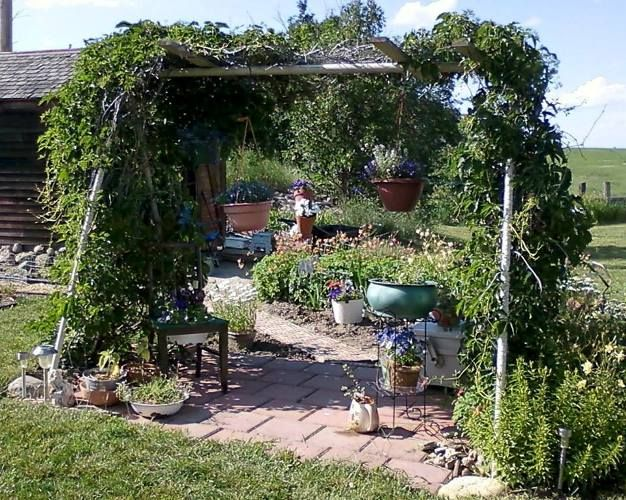 How To Repurpose An Old Swingset For A Swingin Arbor Gardening