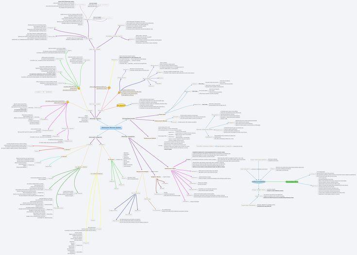 Best 25+ Autonomic nervous system ideas on Pinterest