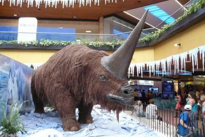"""Rinocerul gigantic, cunoscut şi sub numele de """"unicornul siberian"""", a trăit în urmă cu 30.000 de ani"""