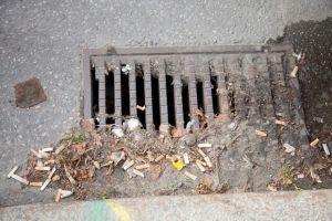 Varje dag slängs 2,7 miljoner fimpar på marken i Sverige. Håll Sverige Rents undersökningar visar att det slängs 1 miljard fimpar varje år på våra gator och torg, 1 000 000 000. Det motsvarar drygt 13 000 badkar fyllda med stinkande fimpar. Mätningar visar att ca 60 procent av allt skräp i stadsmiljöer är fimpar – ett giftigt skräp som det i dag är helt riskfritt för rökaren att kasta på gatan, trots att det infördes böter för några år sedan /.../ Men fimpen undantogs av obegriplig anledning