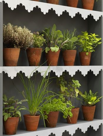 Create a kitchen garden with decorative metal shelf edging, RE.