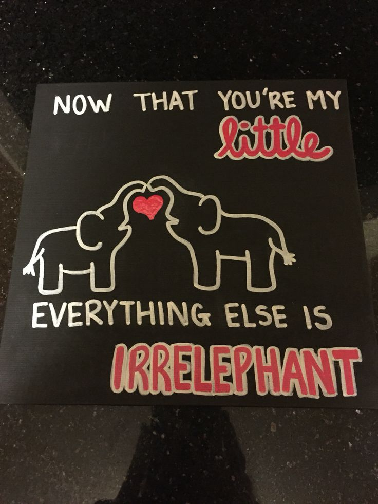 Elephant Pun!                                                                                                                                                                                  More