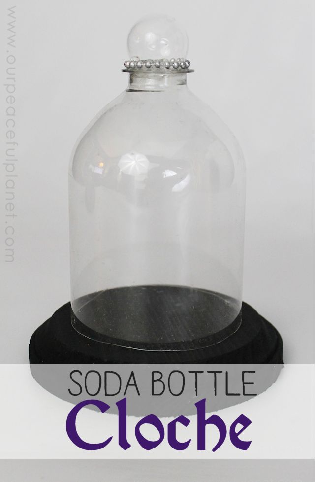 Make your own cloches from soda bottles! It's a wonderful upcycle craft and also a unique way to display all types of things.