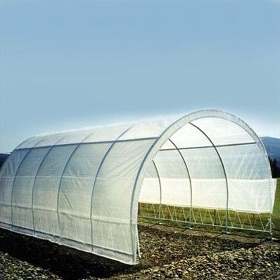 Weatherguard 12 Ft. W x 20 Ft. D Polyethylene Commercial Greenhouse