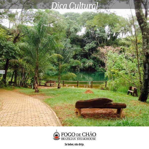 O Parque Olhos D'Água é a nossa dica para você que quer aproveitar para passear em Brasília. Também conhecido como Parque Ecológico e de Uso Múltiplo Olhos D'água, fica localizado perto do final da Asa Norte e é bastante frequentado por quem gosta de praticar esportes ao ar livre ou quem curte ficar observando a natureza. É lugar acolhedor e convidativo para aproveitar com a família! Divirta-se em Brasília! #fogodechãobrasilia #opontocerto #nossadica
