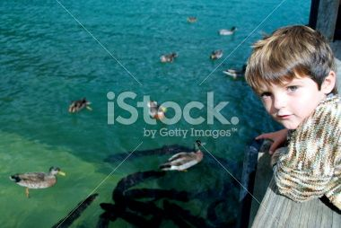 Child with Ducks and Eels Royalty Free Stock Photo