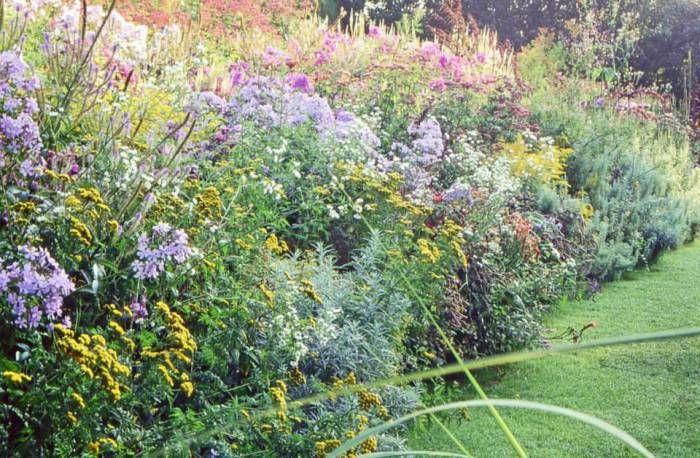 Duurzaam tuinieren – Bodembedekkers als alternatief voor gras | TUINENSTRUINEN.ORG