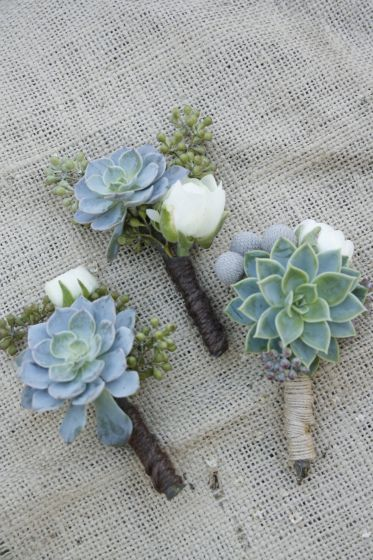 succulent boutineers-these are perfect. Especially like the twine wrapping as opposed to ribbon.