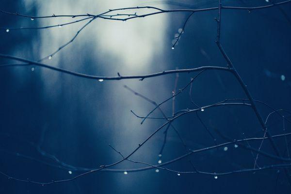 A moment before dark by Nina Lindfors, via Behance