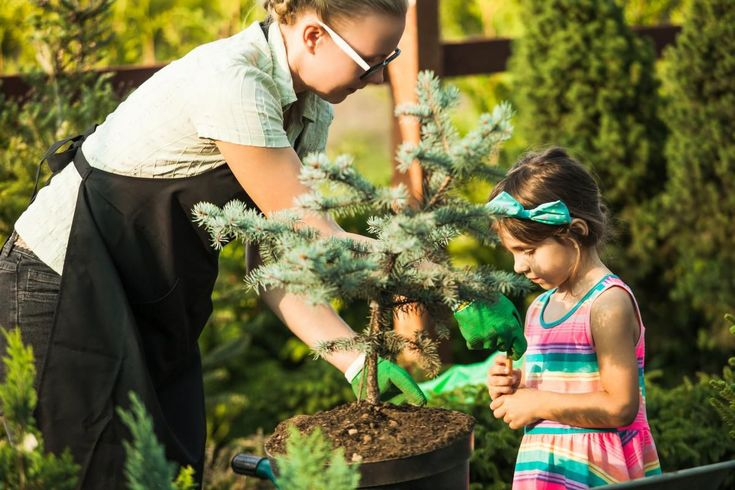 How to work with, not against, extreme weather in your garden: Urban Growth | Th…