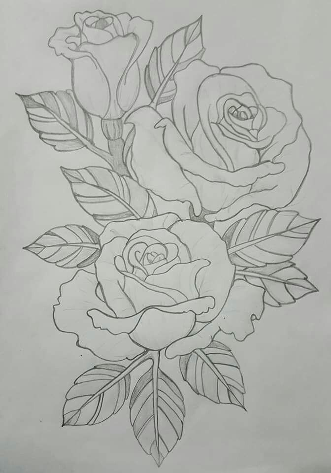 Roses in outline   Beautiful flower drawings, Roses drawing, Fabric painting