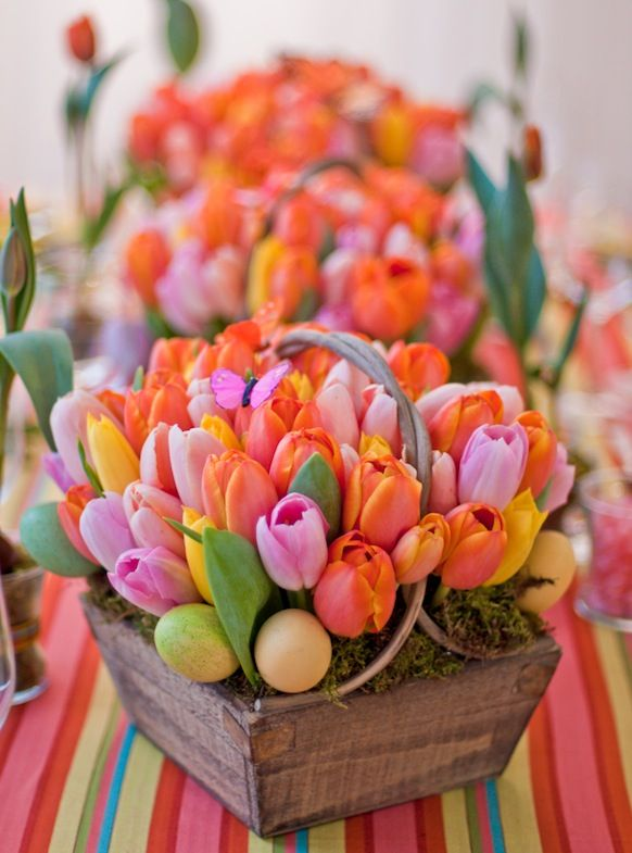 Not a big fan of tulips but love the basket and bright colours
