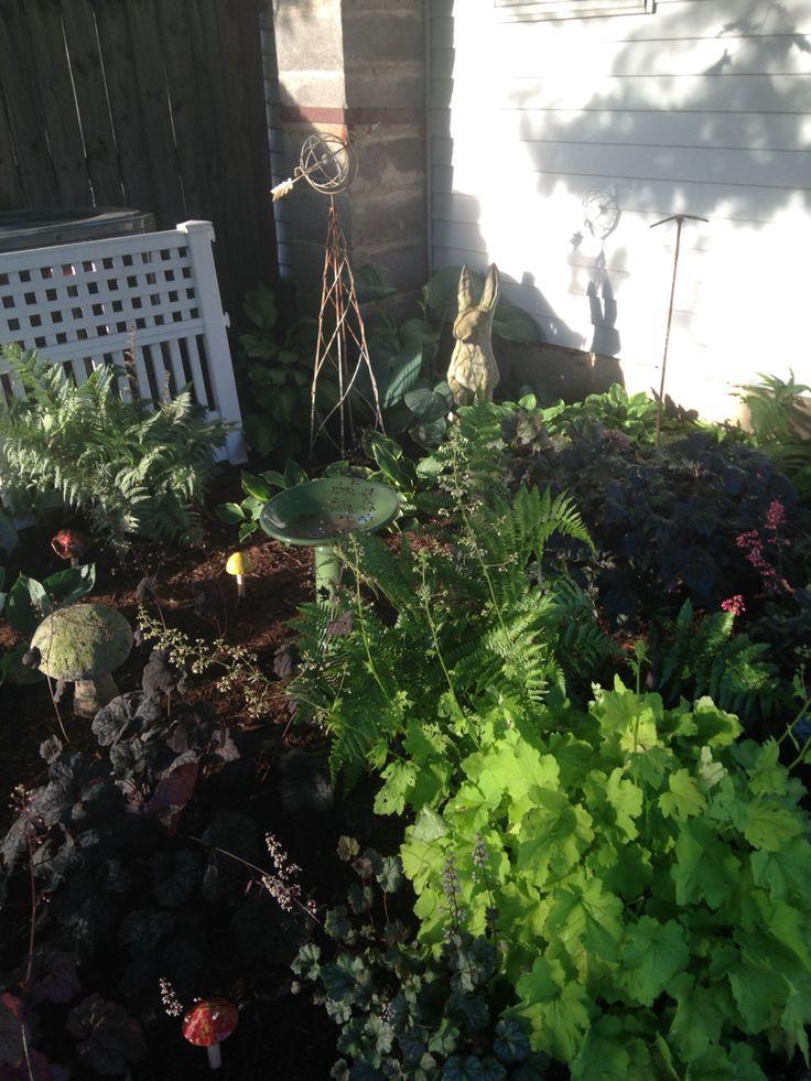 Our shade garden