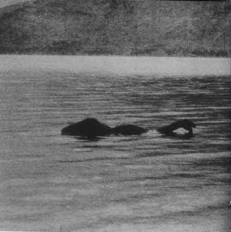 Paranormal Loch Ness Monster Lake Monsters Cryptozoology