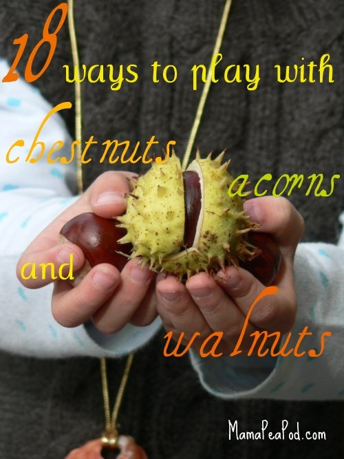 Ideas for play with Chestnuts, Acorns & Walnuts (obviously better suited to toddlers rather than babies!)