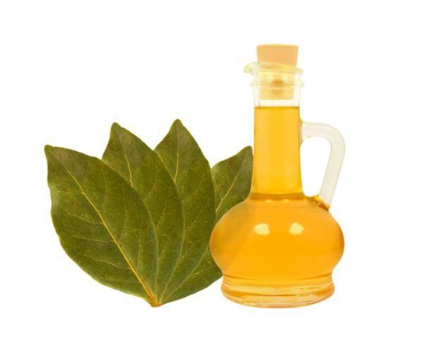Comment faire de l'huile de laurier. L'huile de laurier est une des huiles les plus utilisées pour les traitements d'aromathérapie, de par ses propriétés sédatives, digestives et diurétiques. De même, c'est aussi un composant couramment ...