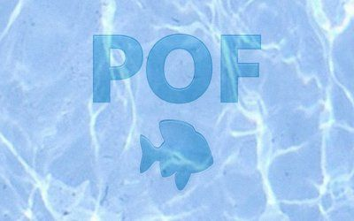Plenty of Fish, dating app review