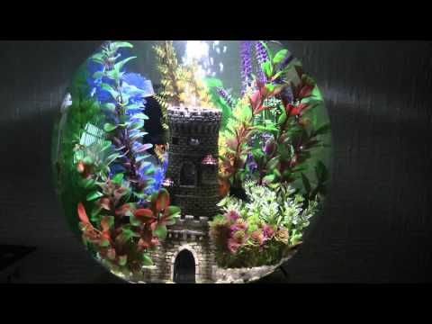 ... Inspiration on Pinterest Artificial plants, Biorb fish tank and