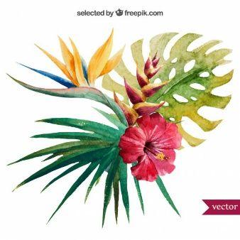 Aquarelle plante tropicale                                                                                                                                                     Plus