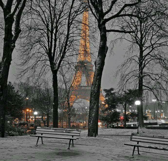 Paryż w zimowej scenerii