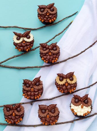 How to Make Easy Owl Cupcakes | The Bearfoot Baker        #bearfootbaker #cupcakes #edibleart #delicoustreats #cutecupcakes  #thebestcupcakes #dliciousicing #easytreats #perfectforalloccasions