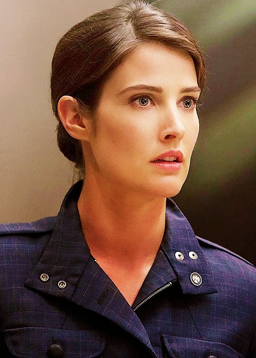 Maria Hill (Earth-199999) The Winter Soilder