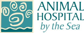 Established in 2011, a new full service small animal hospital in beautiful downtown Langley, WA on Whidbey Island.  www.animalhospitalbythesea.com