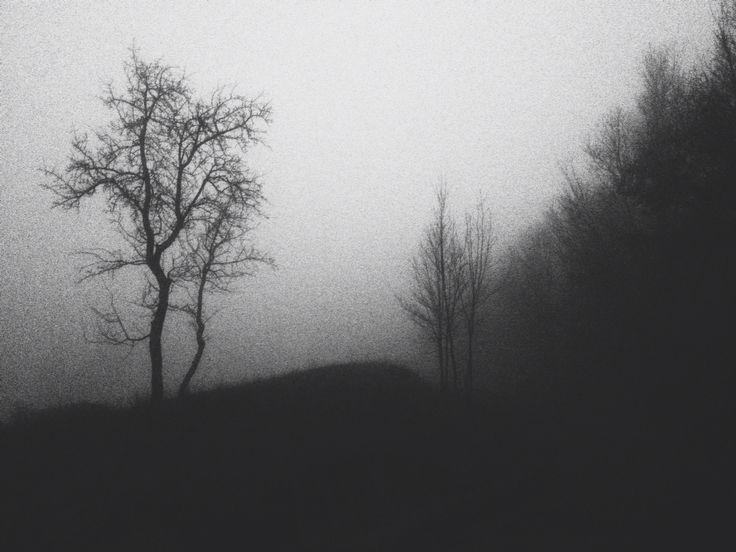 Foggy Carniglia, PR, IT