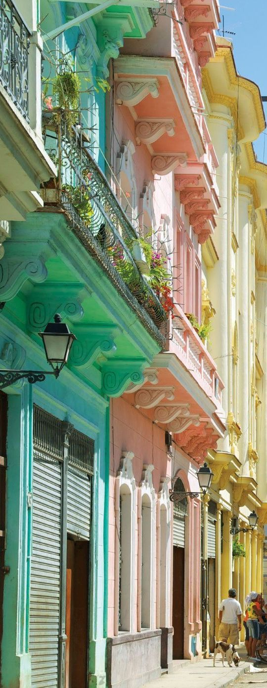 Colorful Houses in La Havana   Cuba