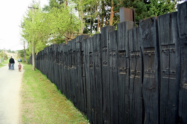 66 best images about fence ideas on pinterest for Natural privacy fence